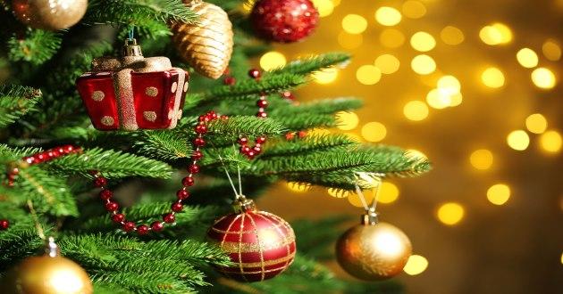 Los or genes y el significado del rbol de navidad for Cuando se pone el arbol de navidad