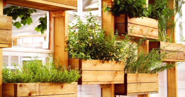 Tipos de jardines verticales revista lamudi for Jardines verticales con madera
