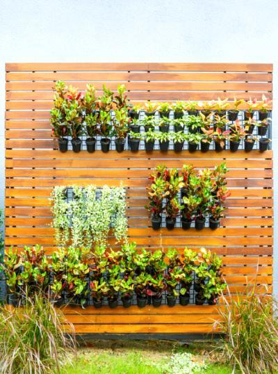 Tipos de jardines verticales revista lamudi for Macetas para muros verticales