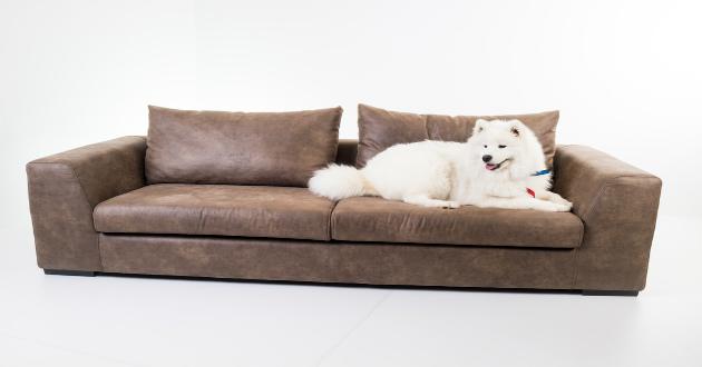 Consejos para comprar muebles revista lamudi for Muebles compra