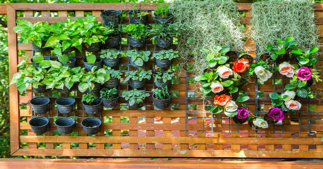 Decoraci n de jardines peque os revista lamudi for Macetas pequenas